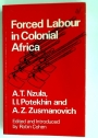 Forced Labour in Colonial Africa.