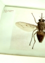 A Monograph of the Tsetse-Flies (Genus Glossina, Westwood): Based on the Collection in the British Museum.