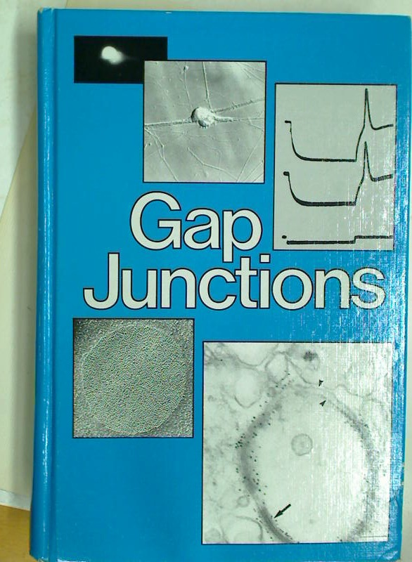 Gap Junctions.