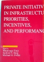 Private Initiatives in Infastructure: Priorities, Incentives, and Performance.