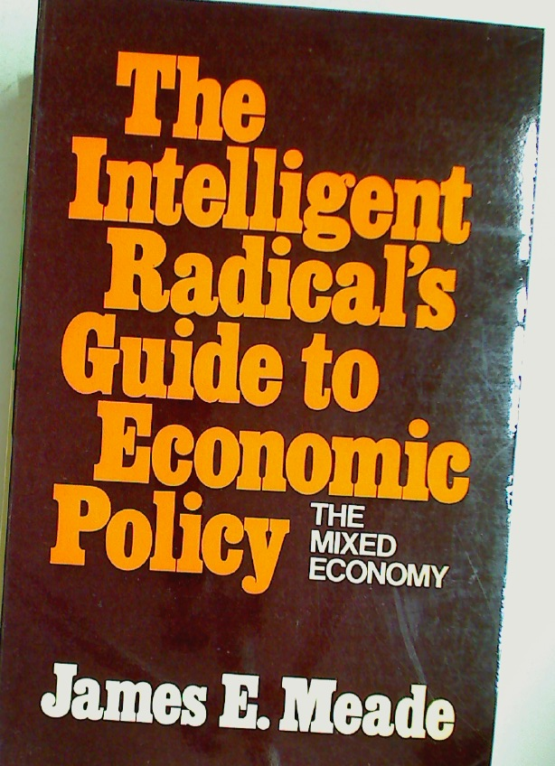The Intelligent Radical's Guide to Economic Policy.