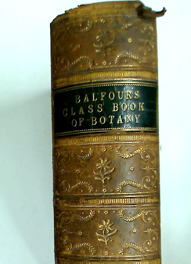 Class Book of Botany, being an Introduction to the Study of the Vegetable Kingdom.