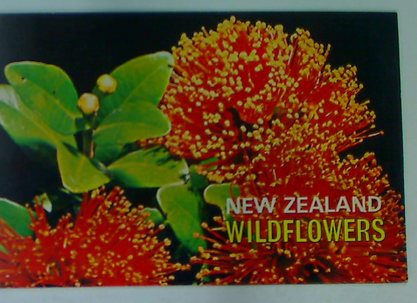 New Zealand Wildflowers.