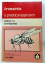 Drosophila. A Practical Approach.