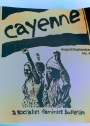Cayenne. A Socialist Feminist Bulletin. No 4. August September 1985.